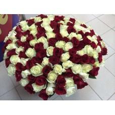 Розы красный белый