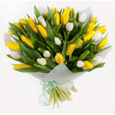 Тюльпаны Солнышко