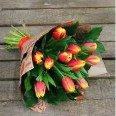 Солнышко тюльпаны